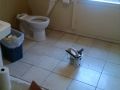 2014 Bathroom Project 12